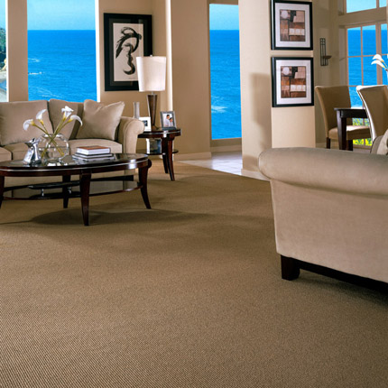 Type of carpeting berber carpet for Best carpet for living room