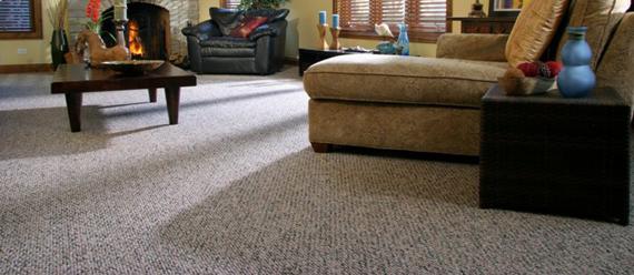 Type of Carpeting: Textured and Plush Carpet